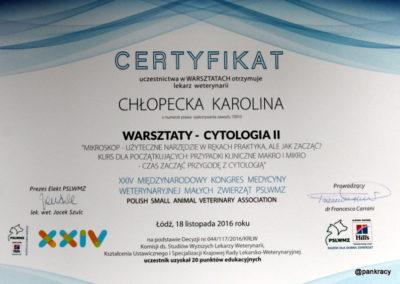 00Karolina Ch cd