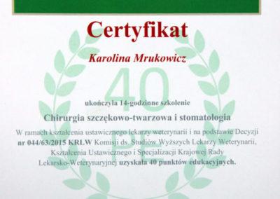 Dyplom 4